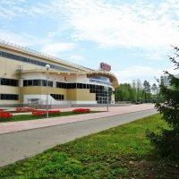 Ледовый дворец :: Лидия (naum.lidiya)