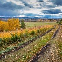 Золотая осень :: Александр Пунцуль