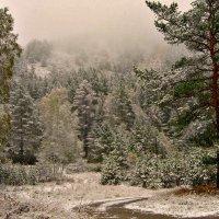 Сентябрьский снегопад :: galina tihonova