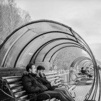 Страна круглых скамеек :: Elena Agaeva