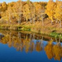 Осеннее  отражение :: Геннадий С.