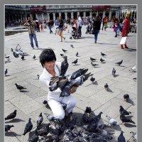 венеция-и птиц кормит... :: мирон щудло