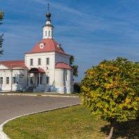 Церковь Обновления Храма Воскресения Христова. Коломна. :: Igor Yakovlev
