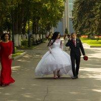 свадьба :: Светлана Фомина