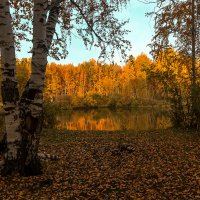 Лесное зеркальце. :: Kassen Kussulbaev