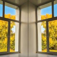 окно в сентябрь :: Владимир