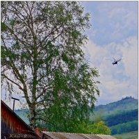Пора в гнездо... :: Кай-8 (Ярослав) Забелин