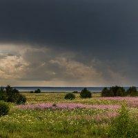 Дождь на озере. :: Sergey L