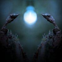 Лесное освещение :: Валерий Талашов