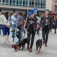 Городской трафик :: Valery Penkin