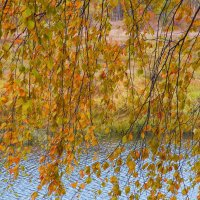 Осень... :: Павел Сухоребриков