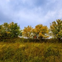 Осень :: Николай Николенко