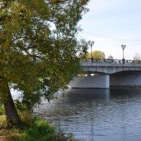 Река Коломенка. :: Oleg4618 Шутченко