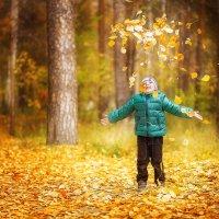 Золотая осень :: Елена S