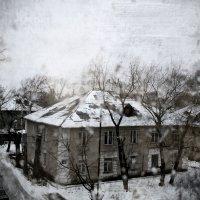Зимняя спячка :: Татьяна Дмитриева