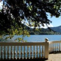 озеро Рица :: Tatyana Belova