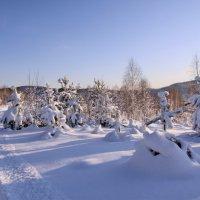 Снежный наряд :: Александр Рождественский