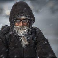 Мороз и солнце... :: Александр Поляков