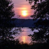 Закат. Финский залив. :: Светлана Захаренко