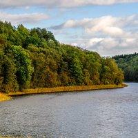 Озеро в Лесковичах. :: Анатолий Клепешнёв
