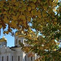 листва :: Игорь Kуленко