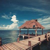 Карибское море. :: Александр Вивчарик