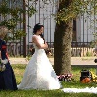 Свадебная фотосессия :: Владимир Болдырев