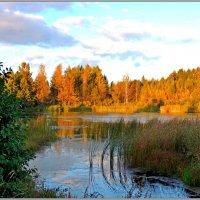Пейзаж с осенью :: Николай Дементьев