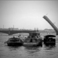 Троицкий мост... :: tipchik