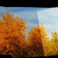 Складывается, что Осень Господа.... :: Grishkov S.M.