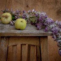 Яблоки и цветы шалфея. :: Лилия *
