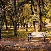 люблю осень) :: Marina Khodakova