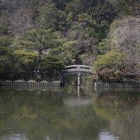 Весна в Киото :: Вадим У