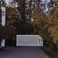 Памятник тем, кто сражался за родину :: Елена Евстигнеева
