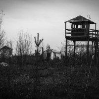 Север... Сталинские посторойки... :: Александр Рыжков