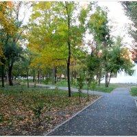 Осенний вечер в парке... :: Тамара (st.tamara)