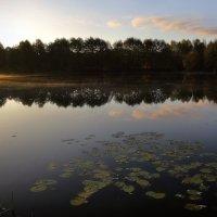 Пора октябрьских рассветов...5 :: Андрей Войцехов