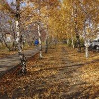 Что такое осень? :: Александр Ширяев