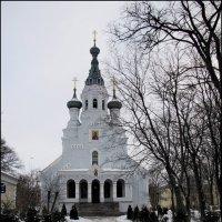Владимирский собор иконы Божией Матери. :: Ирина Нафаня