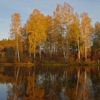 Осенний парк :: Анатолий