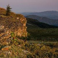 В лучах восходящего солнца :: Ирина Терентьева