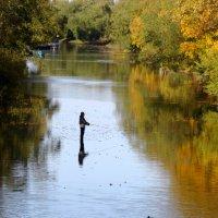 Рыбак в реке рыбачит. :: Владимир Гилясев