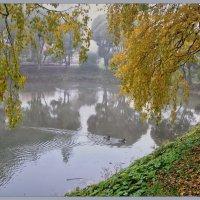 Тихая Осень. :: Vadim WadimS67