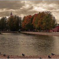 Осень... :: Владимир Елкин