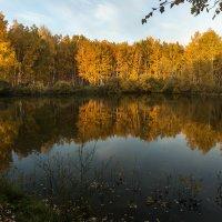 Осенний пейзаж. :: Kassen Kussulbaev