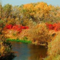 Осенний пожар на Орели :: Юрий Муханов
