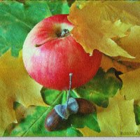 Осенний натюрморт 2 :: Лидия (naum.lidiya)