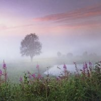 Пейзаж с прудом :: Валерий Талашов
