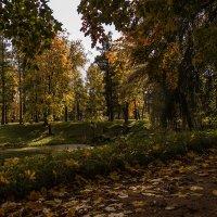Осенний этюд :: Валентин Яруллин