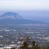 Вид на г.Змейка (Минеральные Воды) с горы Машук (Пятигорск) :: Наталья Vorobjeva
